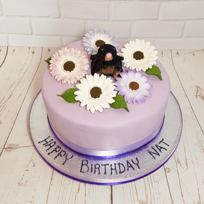 Lilac cake with rabbit and gerberas - tamworth sutton coldfield